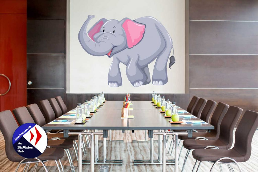 https://bizvision.co.uk Elephant in the room