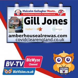 Gill Jones of Amber House B&B on BizVision BV-TV BizWyze Show